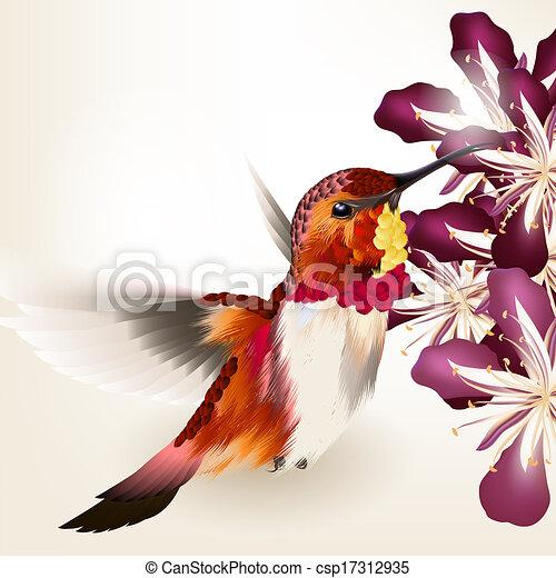 dessins de beau r aliste vecteur fredonner fleurs oiseau vector csp17312935. Black Bedroom Furniture Sets. Home Design Ideas