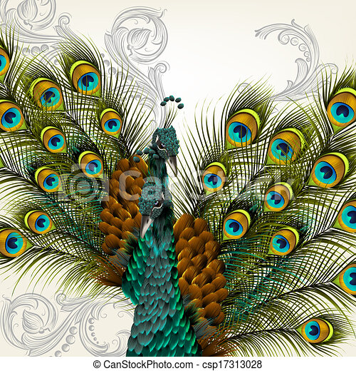 Cute Peacock Drawings Cute Background With Vector