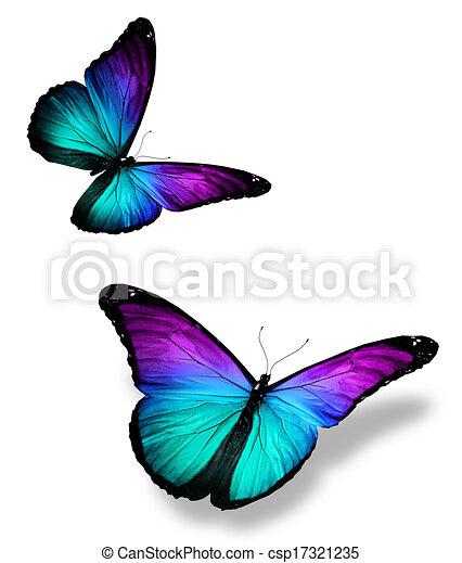 Dessins de couleur papillons blanc deux deux couleur - Papillon dessin couleur ...