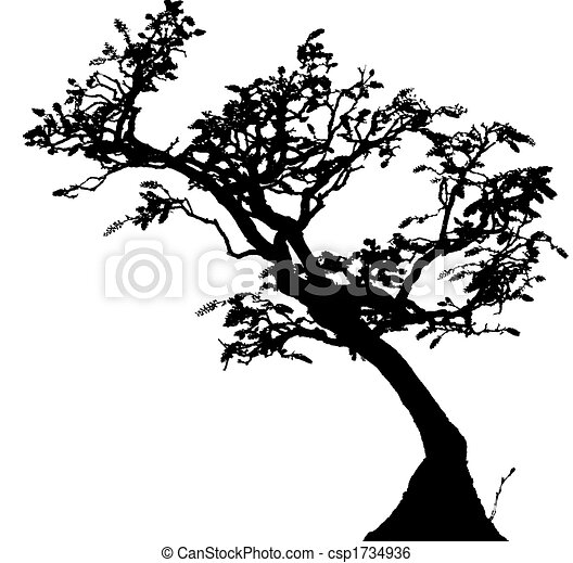 Banco de ilustra o de bonsai a arte de est tico for Vasi per bonsai prezzi
