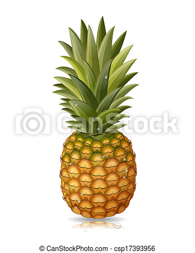 vecteur clipart de isol ananas ananas isol. Black Bedroom Furniture Sets. Home Design Ideas