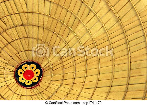 Vietnamese hat - csp1741172