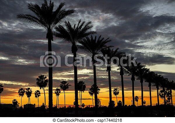 Anaheim Sunset - csp17440218
