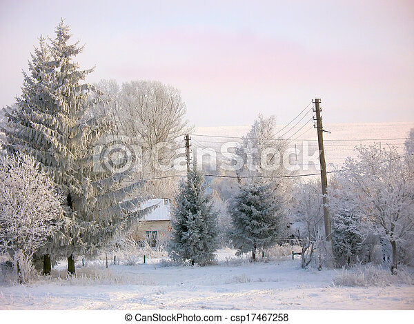 Winter rural landscape under snow - csp17467258