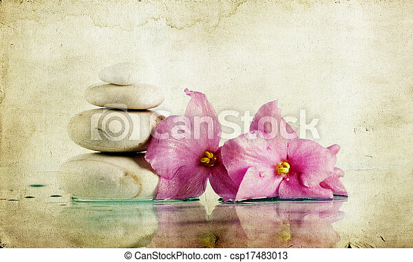 Vintage photo of spa stones and pink flower