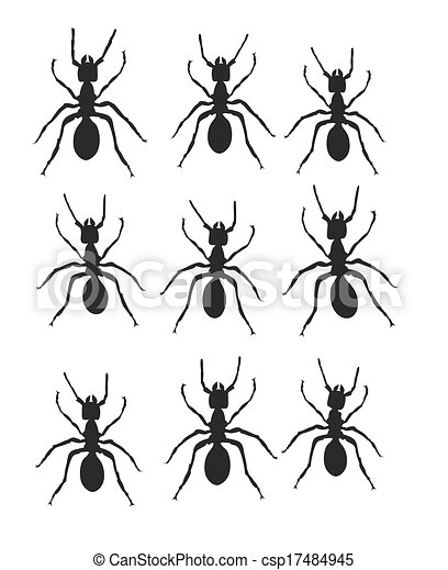 Ants In A Line Clip Art Stock Illustration - ant trail