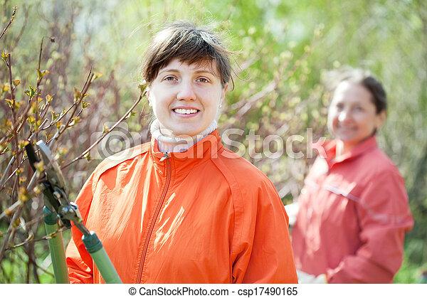 woman trimming bough of an bush