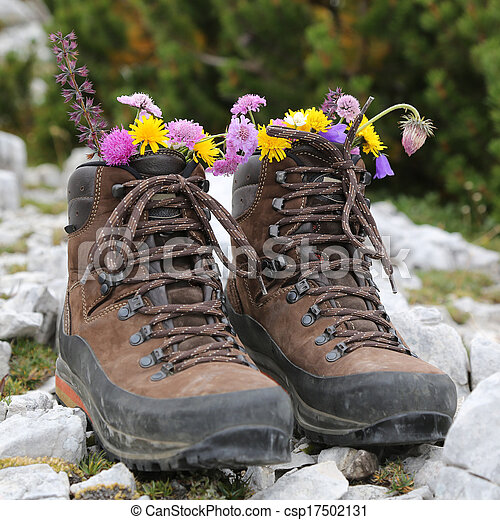 Hiking boots with flowers in the mountains - csp17502131