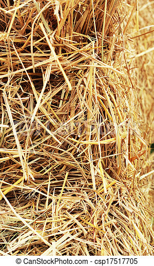 Close up hay straw stack texture, agriculture background - csp17517705