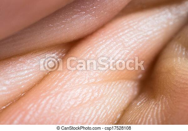 up human skin macro epidermis stock images image 36429614 stock photography of up human skin macro epidermis texture csp17528108 search stock