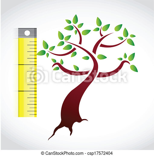 tree measure illustration design - csp17572404
