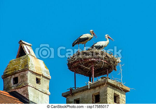 stock fotografie von storch nest sterreich rost a stork 39 s nest auf a csp17585017. Black Bedroom Furniture Sets. Home Design Ideas