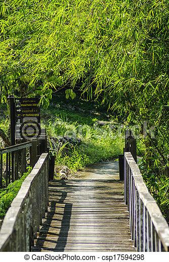 Bridges, bamboo, tropical rain forests, Thailand - csp17594298