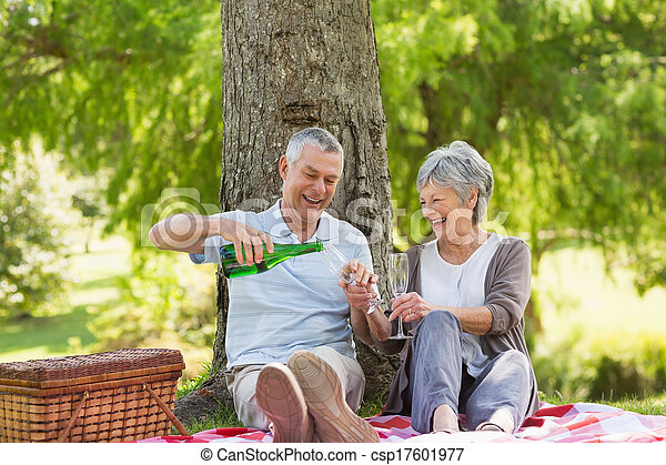 Cheerful senior couple having champagne at park - csp17601977