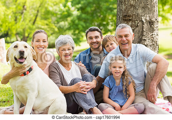 Extended family with their pet dog at park - csp17601994