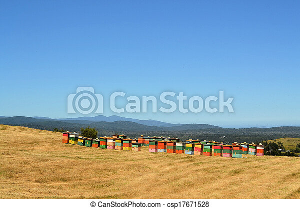 Rural wooden beehives on hilltop - csp17671528