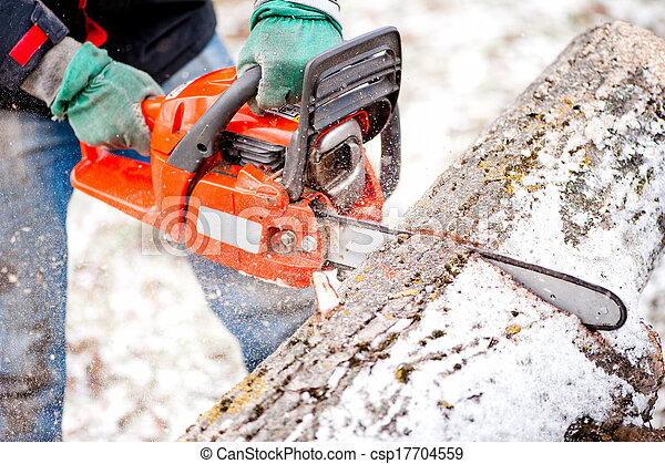 Adult worker cutting trees with chainsaw and tools - csp17704559