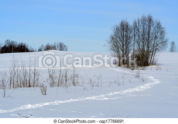 Winter foot path, rural field - csp17766691