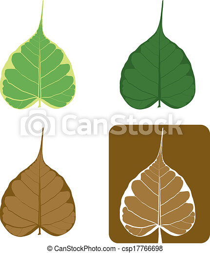 Vector Clipart of Set of Bodhi (Sacred Fig) tree Vector ...