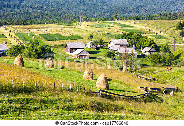 Summer mountain rural view with haystacks (Carpathian, Ukraine) - csp17766840