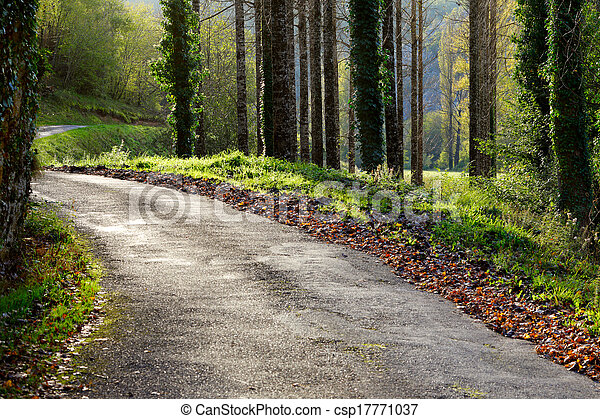 A rural road on a sunny autumn day - csp17771037