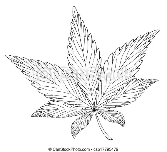 Illustrations vectoris es de usine cannabis feuille sativa illustration de les - Feuille cannabis dessin ...