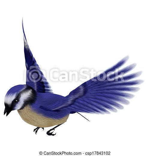 illustration de floride  geai  oiseau 3d  num u00e9rique blue jay clip art free blue jay feather clip art