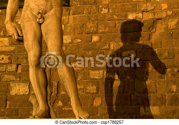 Shadow of Michelangelo's David on wall, Piazza Della Signoria, F - csp1788257