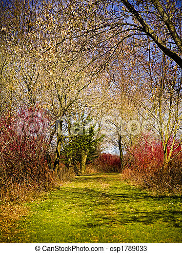 Farben, Natur - csp1789033