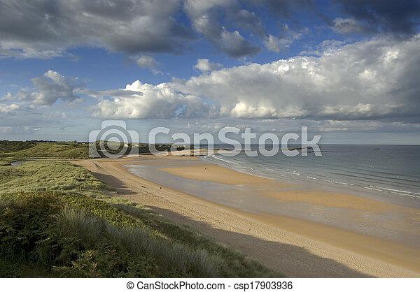 Embleton Bay from dunes - csp17903936