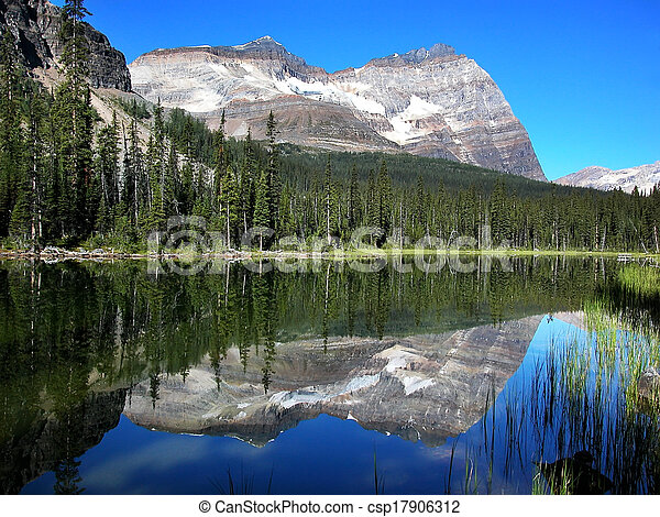 Lake O'Hara, Yoho National Park, British Columbia, Canada - csp17906312