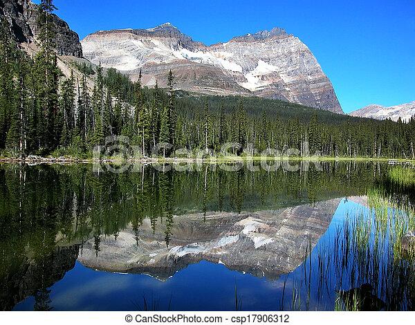 Lake O'Hara, Yoho National Park, British Columbia, Canada - csp17906312