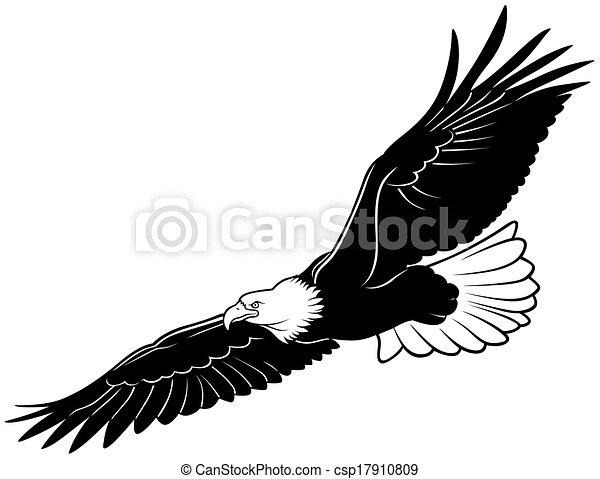 Vector Clipart Of Flying Bald Eagle Black Outline