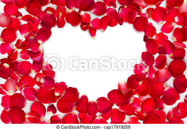 rose petals with place for text  - csp17919259