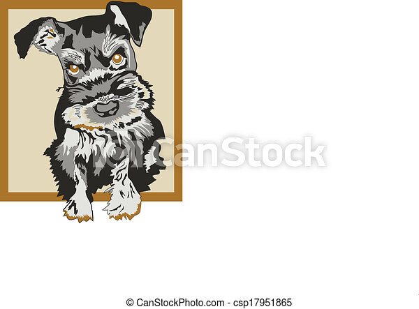 Vector - Schnauzer, Dog Sketched Vector - stock illustration, royalty ...
