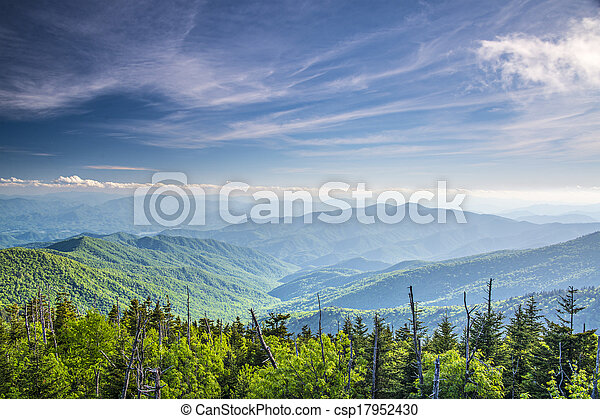 View From Clingman\'s Dome