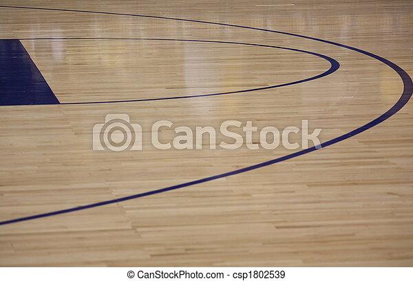 Basketball Court - csp1802539