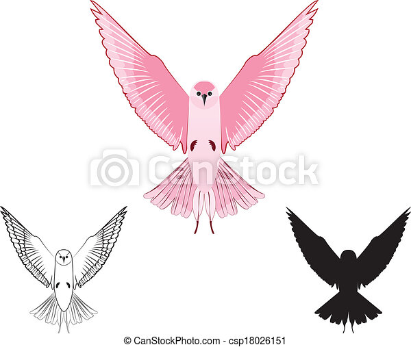 Bird With Open Wings Drawing Vector Bird With Open Wings