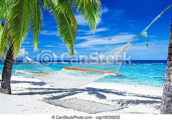 Hammock between palm trees on tropical beach - csp18039202