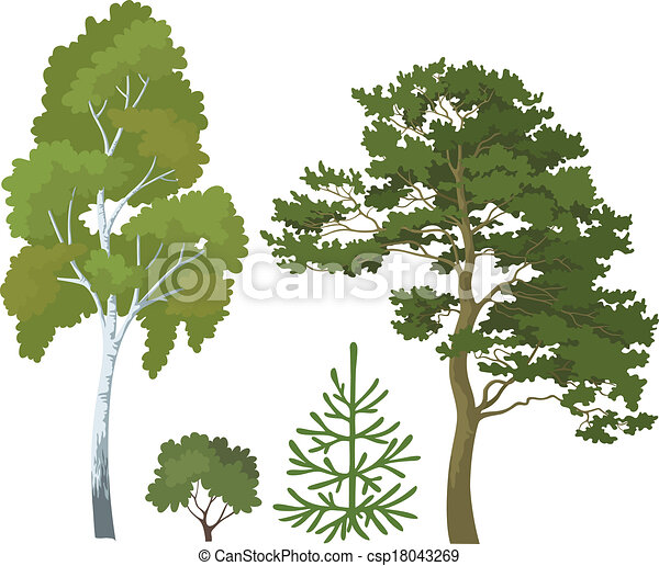 Forest Plants Drawings Forest Plants Set