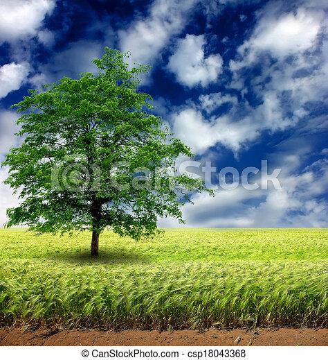 Fantasy landscape  - csp18043368