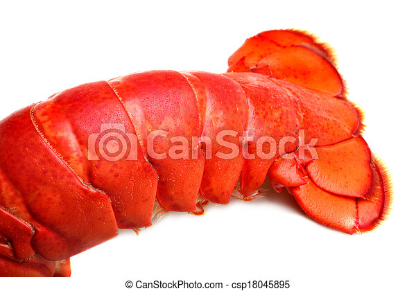 Lobster tail - csp18045895