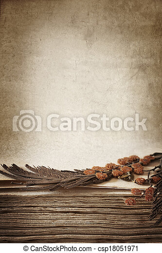 Pressed Flowers in Antique Book - csp18051971