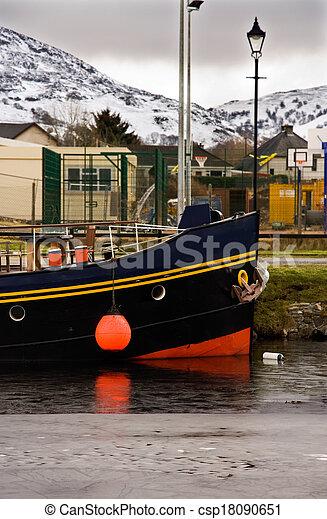 Scottish highlander - csp18090651