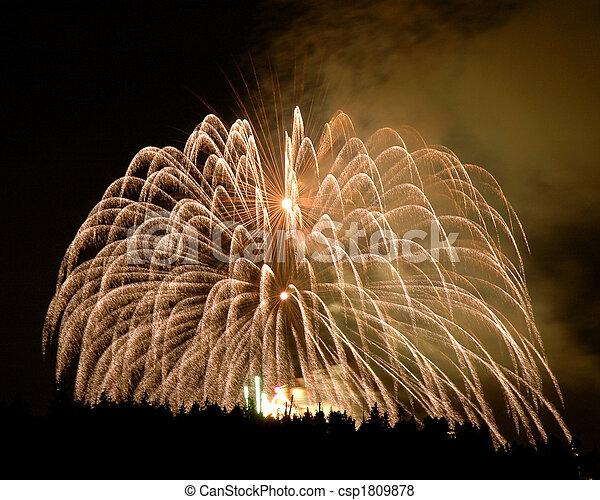 Spectacular fireworks show - csp1809878