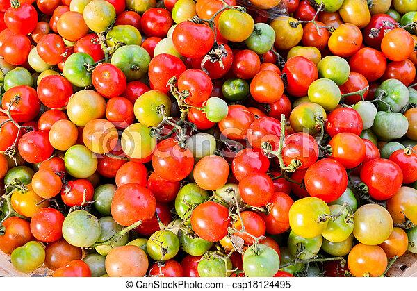 small tomato - csp18124495