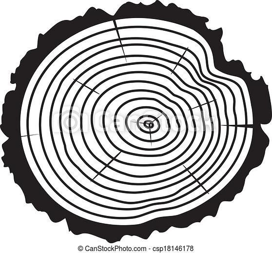 Tree Log Drawing Cut of a Tree Log Vector