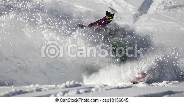 Skiing and Snowboarding Winter Sport Enthusiast
