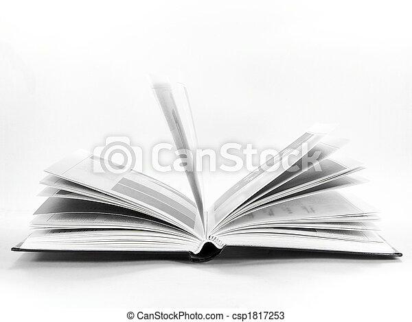 Opening Book - csp1817253