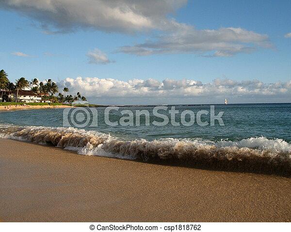 Tropical Coastline - csp1818762
